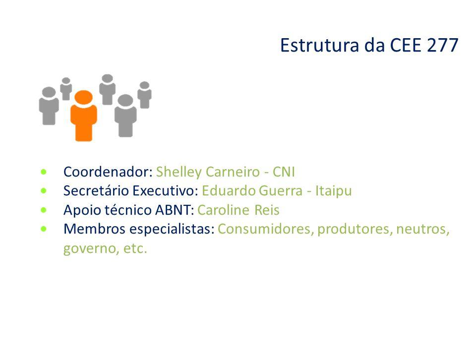 Estrutura da CEE 277 Coordenador: Shelley Carneiro - CNI