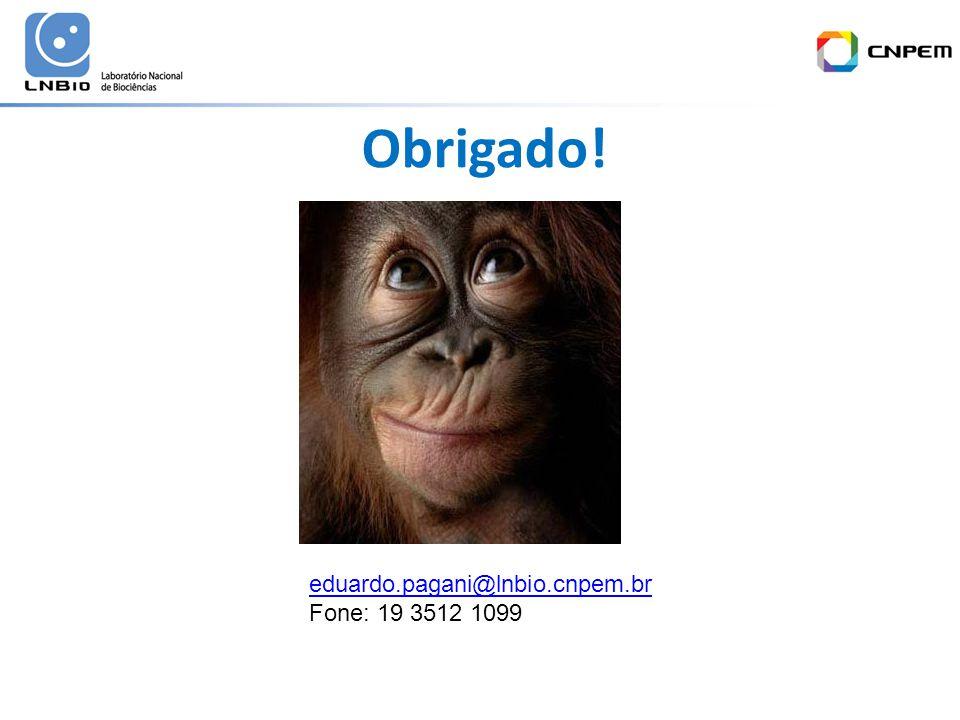 Obrigado! eduardo.pagani@lnbio.cnpem.br Fone: 19 3512 1099