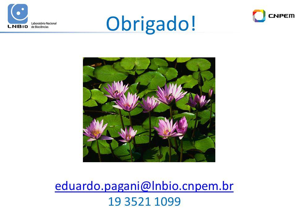 Obrigado! eduardo.pagani@lnbio.cnpem.br 19 3521 1099