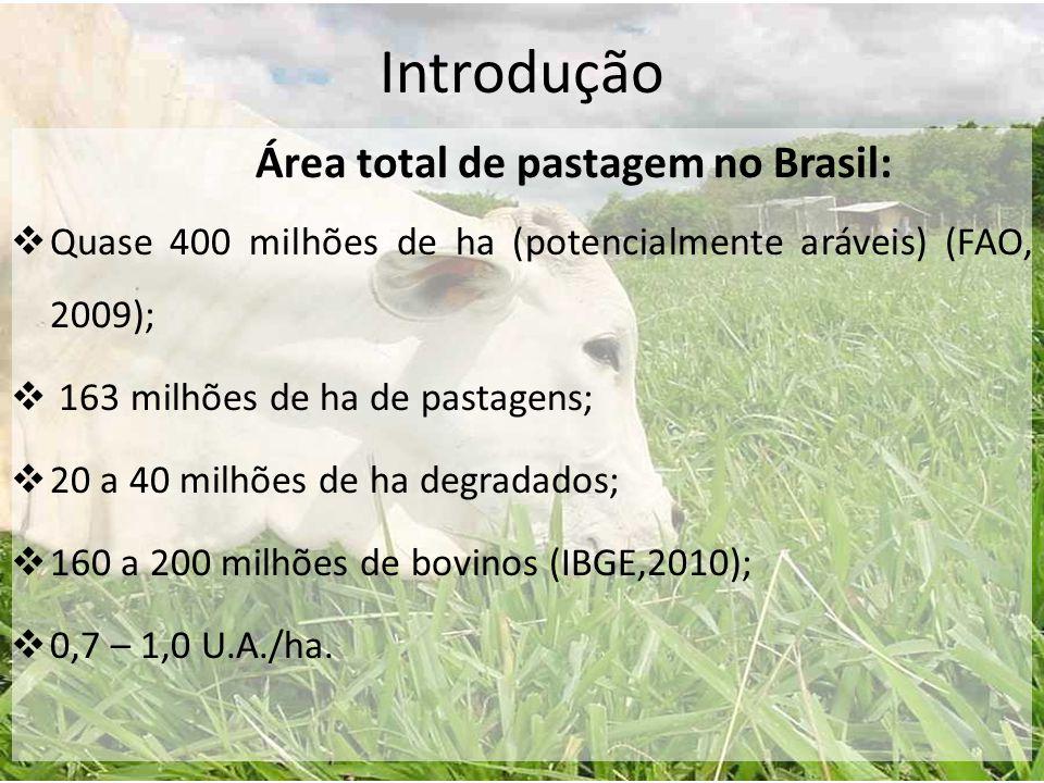 Área total de pastagem no Brasil: