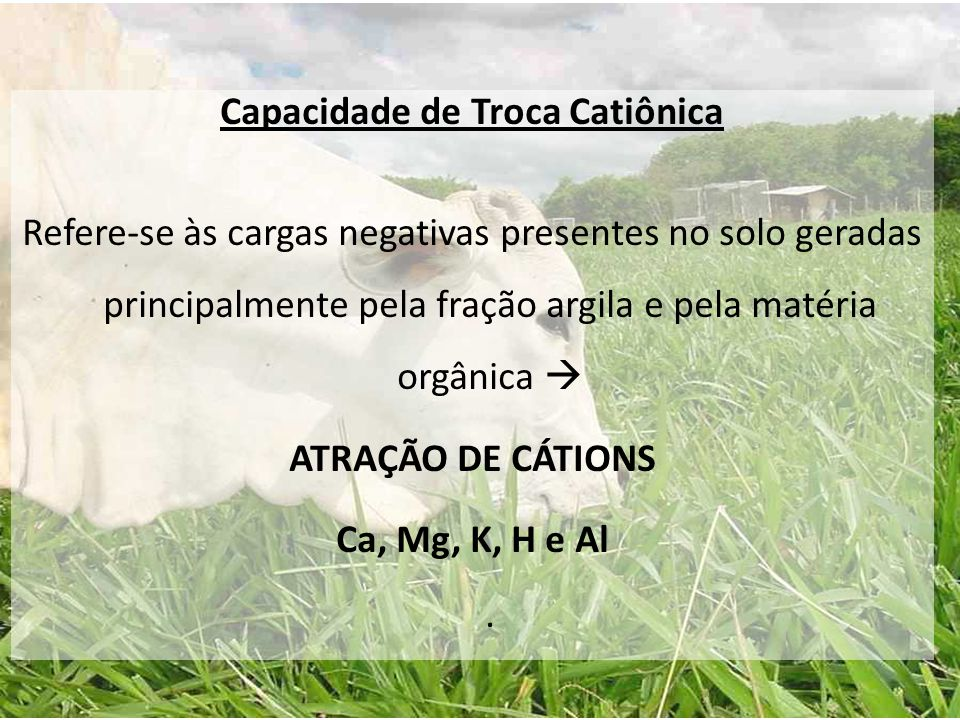 Capacidade de Troca Catiônica Refere-se às cargas negativas presentes no solo geradas principalmente pela fração argila e pela matéria orgânica  ATRAÇÃO DE CÁTIONS Ca, Mg, K, H e Al .