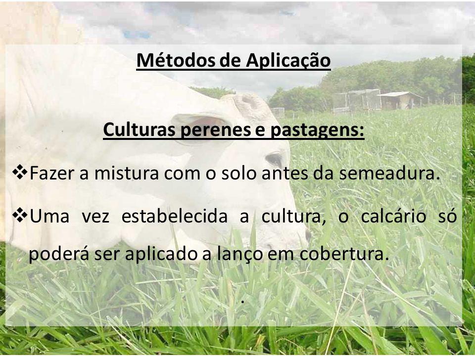 Culturas perenes e pastagens: