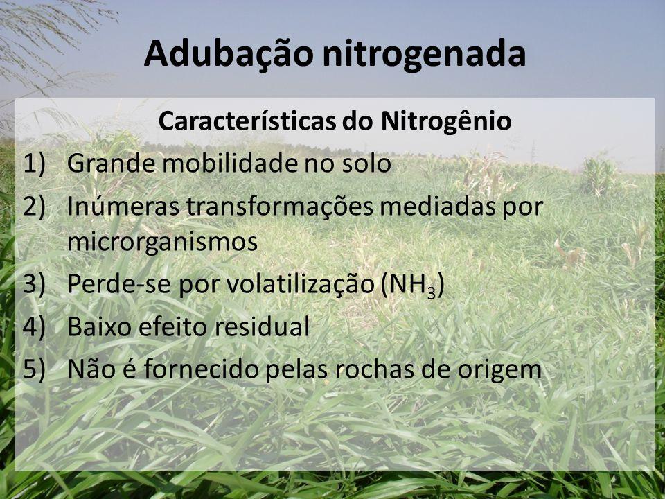 Características do Nitrogênio