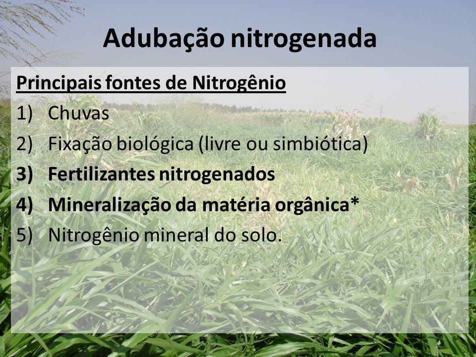Adubação nitrogenada Principais fontes de Nitrogênio Chuvas