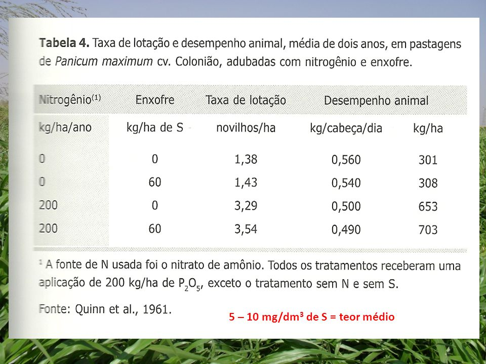 5 – 10 mg/dm3 de S = teor médio