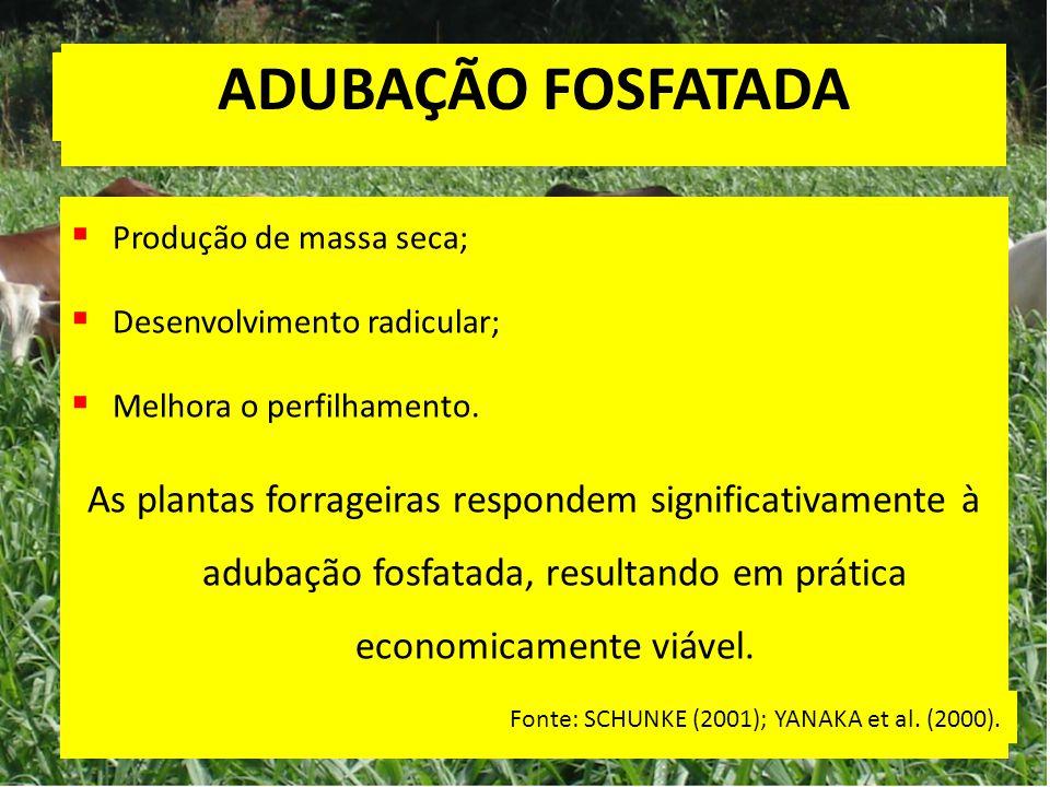 ADUBAÇÃO FOSFATADA ADUBAÇÃO FOSFATADA