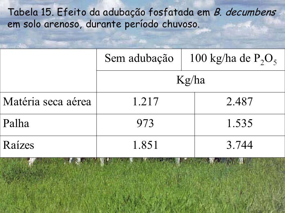 Sem adubação 100 kg/ha de P2O5 Kg/ha Matéria seca aérea 1.217 2.487