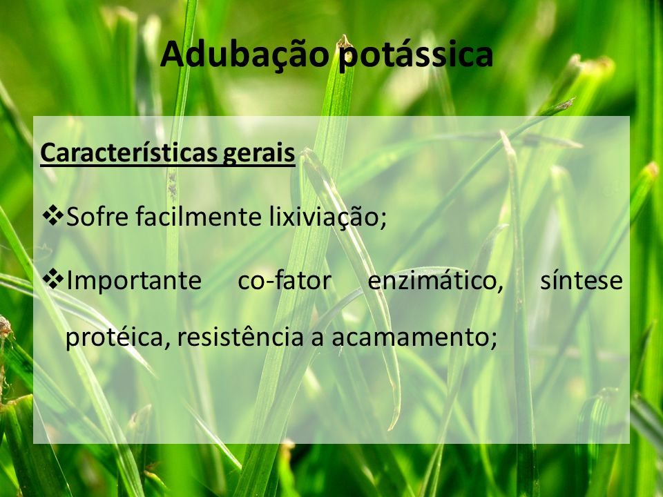 Adubação potássica Características gerais Sofre facilmente lixiviação;