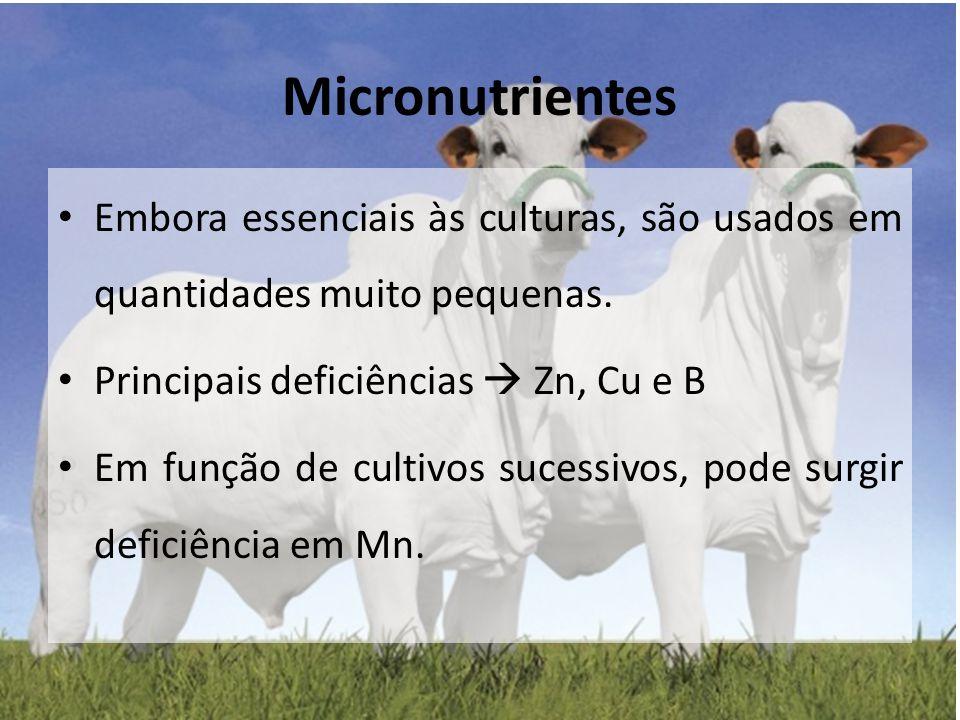 Micronutrientes Embora essenciais às culturas, são usados em quantidades muito pequenas. Principais deficiências  Zn, Cu e B.