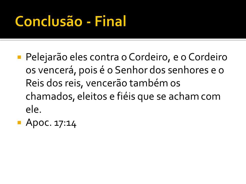 Conclusão - Final