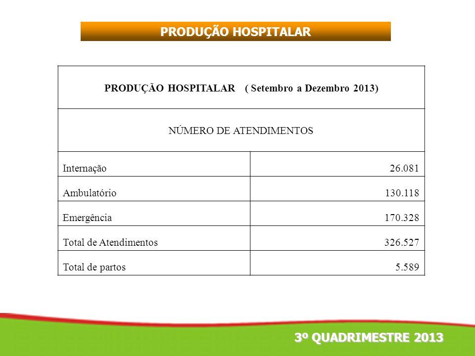 PRODUÇÃO HOSPITALAR 3º QUADRIMESTRE 2013