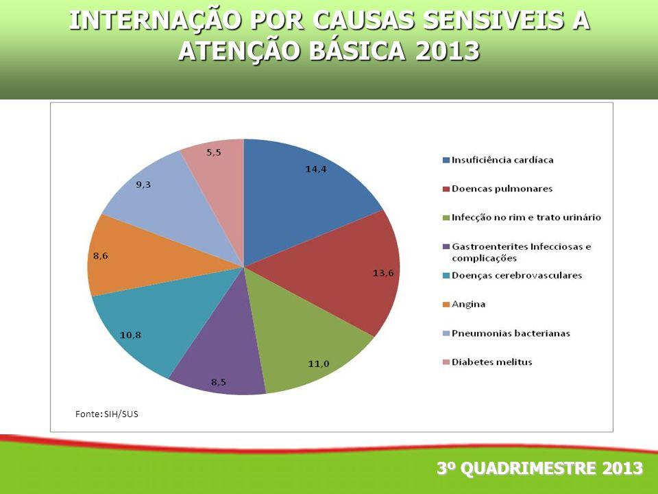 INTERNAÇÃO POR CAUSAS SENSIVEIS A ATENÇÃO BÁSICA 2013