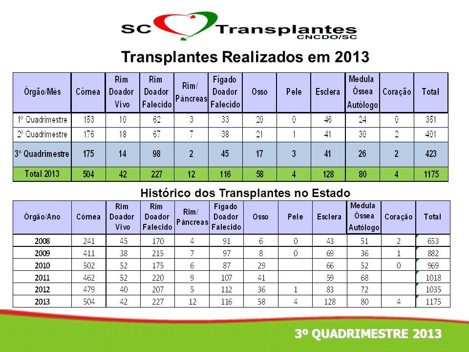 Transplantes Realizados em 2013