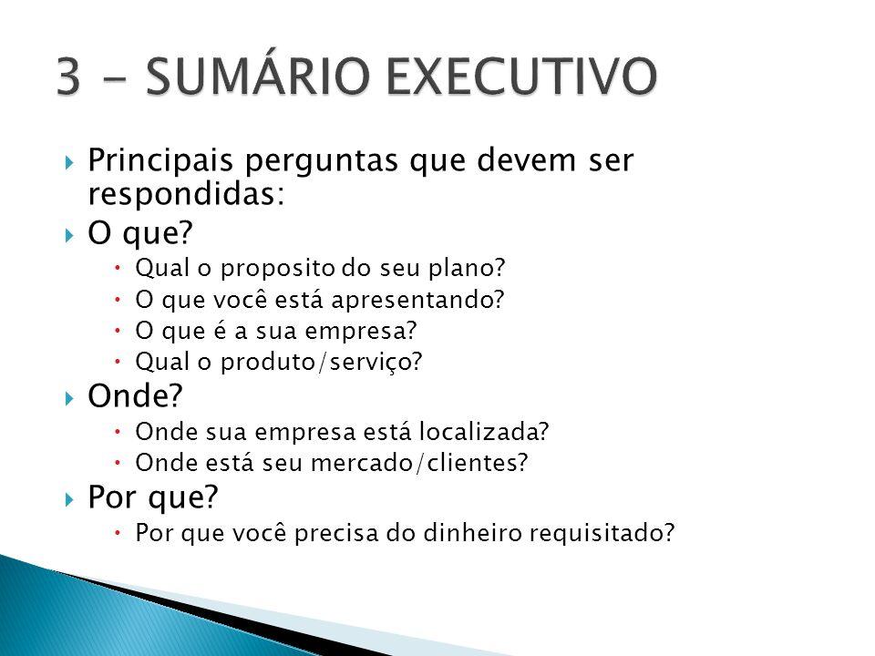 3 - SUMÁRIO EXECUTIVO Principais perguntas que devem ser respondidas: