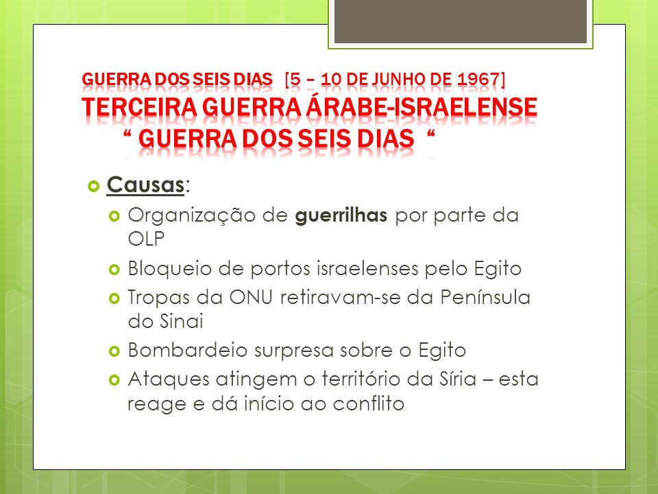 Causas: Organização de guerrilhas por parte da OLP