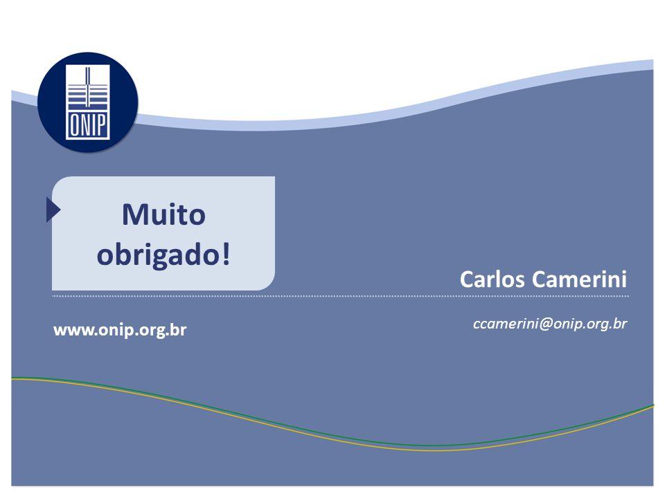 Muito obrigado! Carlos Camerini www.onip.org.br ccamerini@onip.org.br
