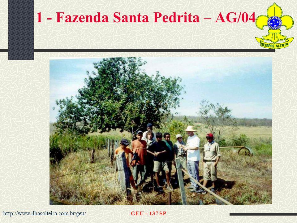 1 - Fazenda Santa Pedrita – AG/04