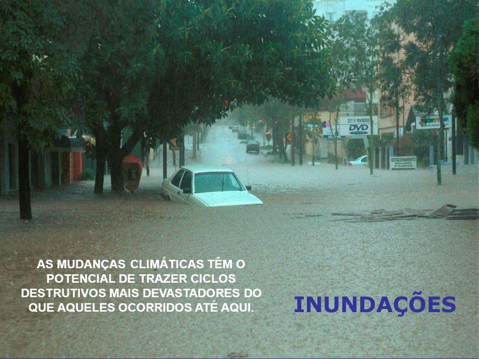 AS MUDANÇAS CLIMÁTICAS TÊM O POTENCIAL DE TRAZER CICLOS DESTRUTIVOS MAIS DEVASTADORES DO QUE AQUELES OCORRIDOS ATÉ AQUI.