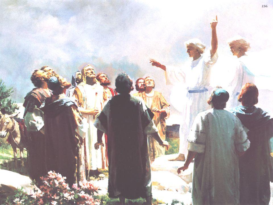 - No Pentecostes: A Ação do ESPÍRITO SANTO na Igreja,