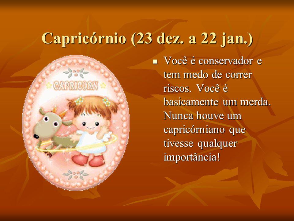 Capricórnio (23 dez. a 22 jan.)