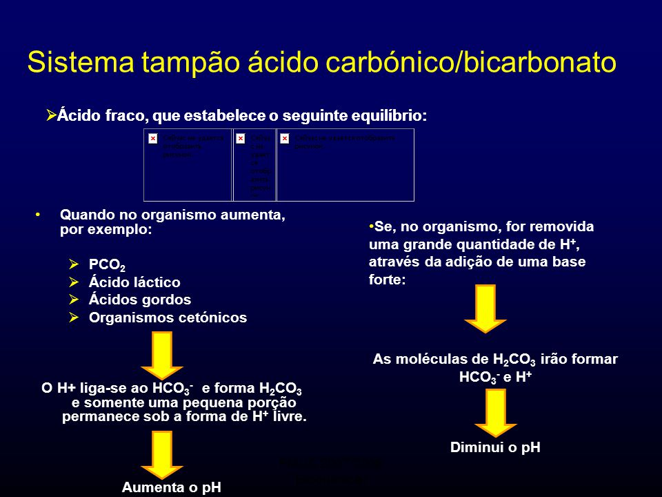 As moléculas de H2CO3 irão formar HCO3- e H+