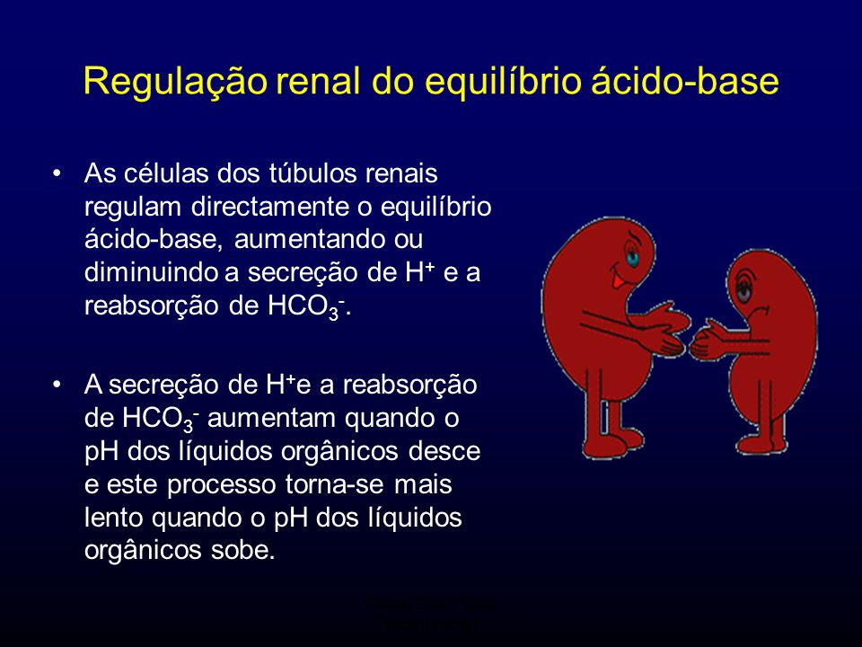 Regulação renal do equilíbrio ácido-base
