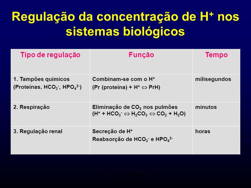 Seminário Orientado de Bioquímica I