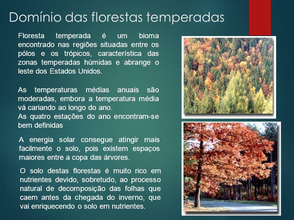 Domínio das florestas temperadas