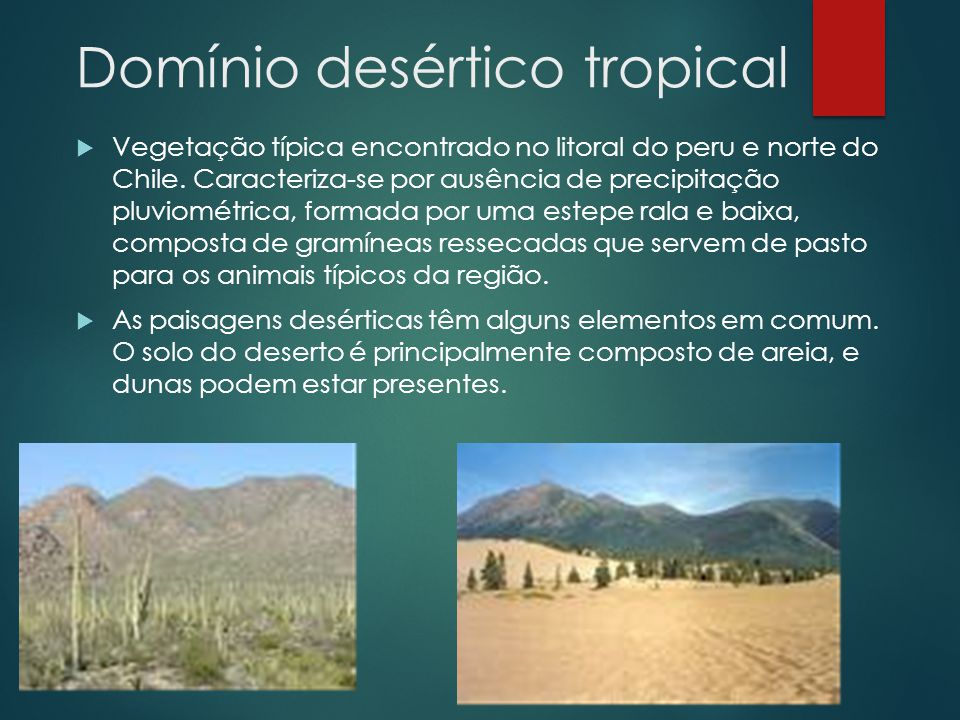 Domínio desértico tropical
