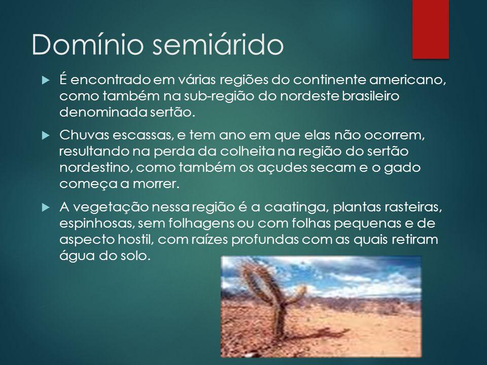 Domínio semiárido É encontrado em várias regiões do continente americano, como também na sub-região do nordeste brasileiro denominada sertão.