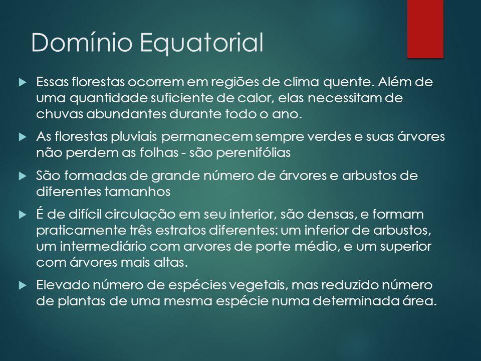 Domínio Equatorial