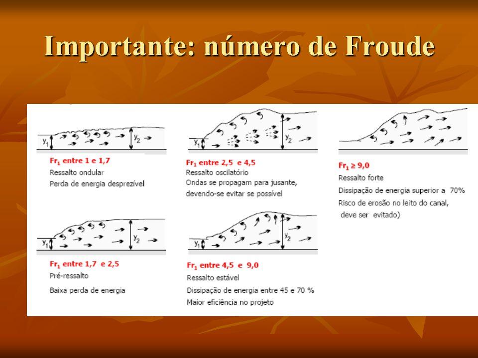 Importante: número de Froude