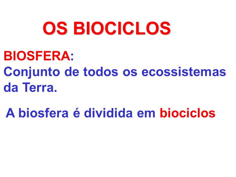 OS BIOCICLOS BIOSFERA: Conjunto de todos os ecossistemas da Terra.