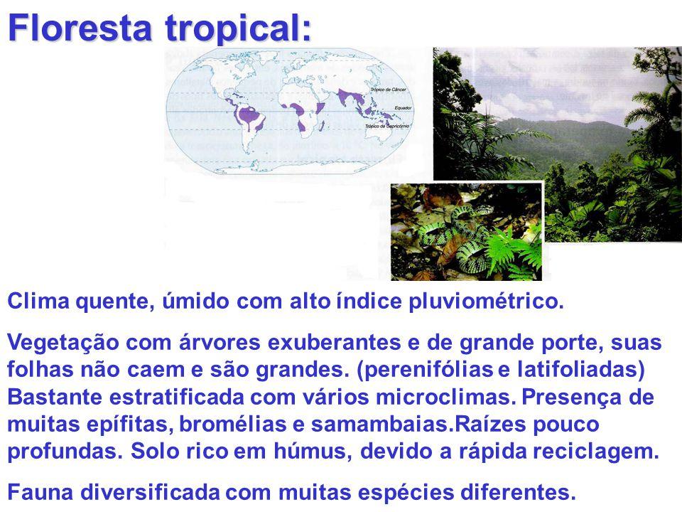 Floresta tropical: Clima quente, úmido com alto índice pluviométrico.