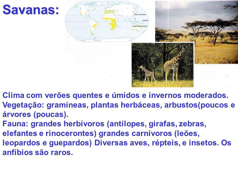 Savanas: Clima com verões quentes e úmidos e invernos moderados.