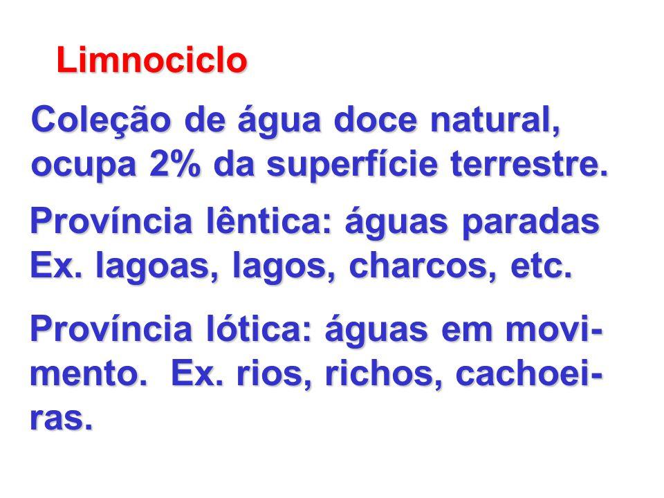 Limnociclo Coleção de água doce natural, ocupa 2% da superfície terrestre. Província lêntica: águas paradas.