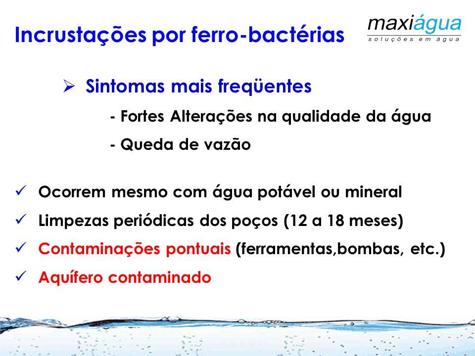 Incrustações por ferro-bactérias