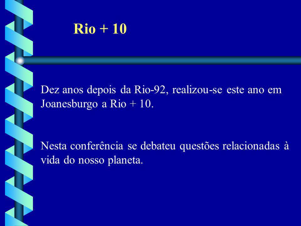 Rio + 10 Dez anos depois da Rio-92, realizou-se este ano em
