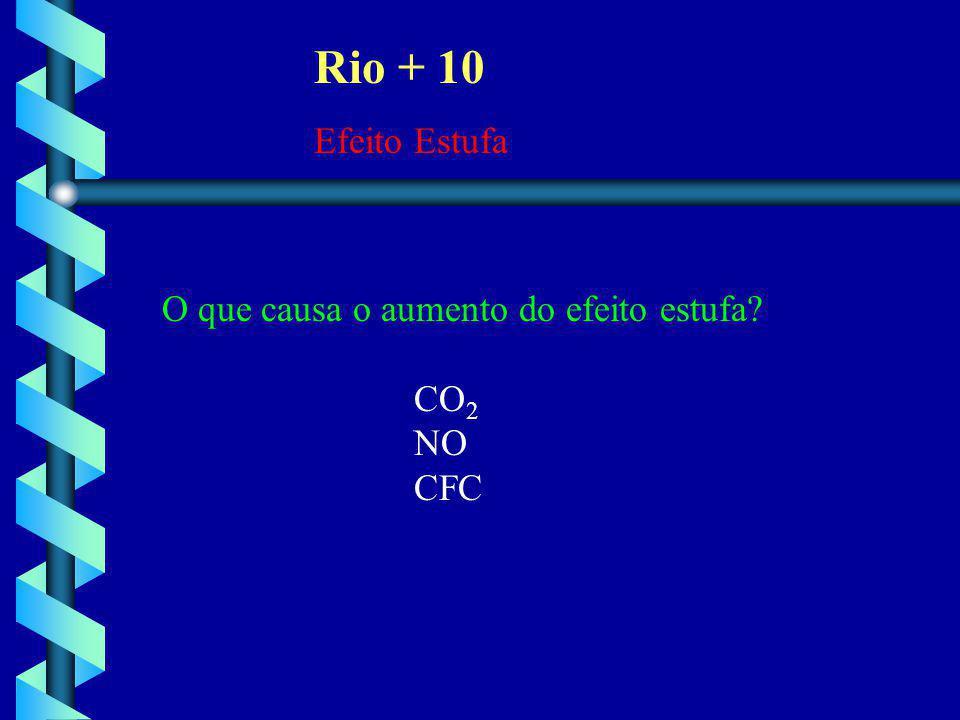 Rio + 10 Efeito Estufa O que causa o aumento do efeito estufa CO2 NO