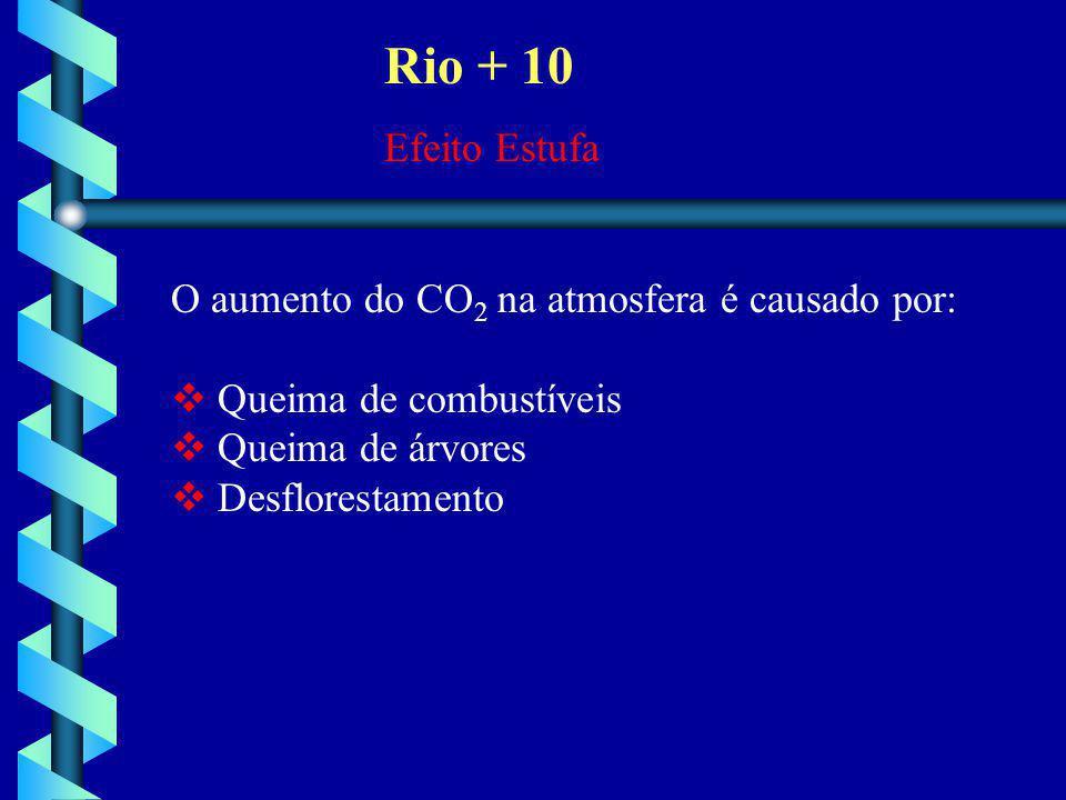 Rio + 10 Efeito Estufa O aumento do CO2 na atmosfera é causado por: