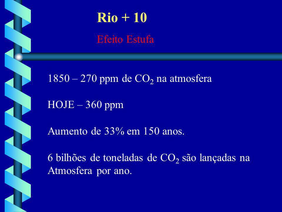 Rio + 10 Efeito Estufa 1850 – 270 ppm de CO2 na atmosfera