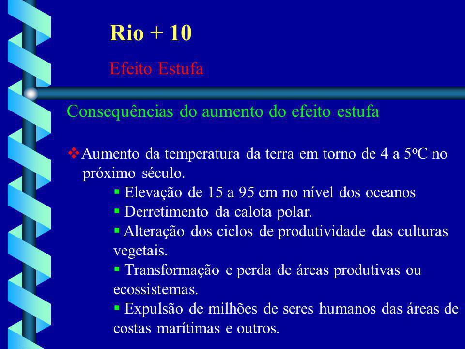 Rio + 10 Efeito Estufa Consequências do aumento do efeito estufa
