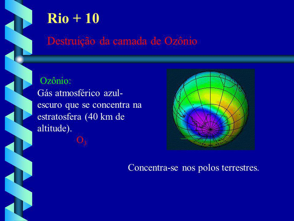 Rio + 10 Destruição da camada de Ozônio Ozônio: