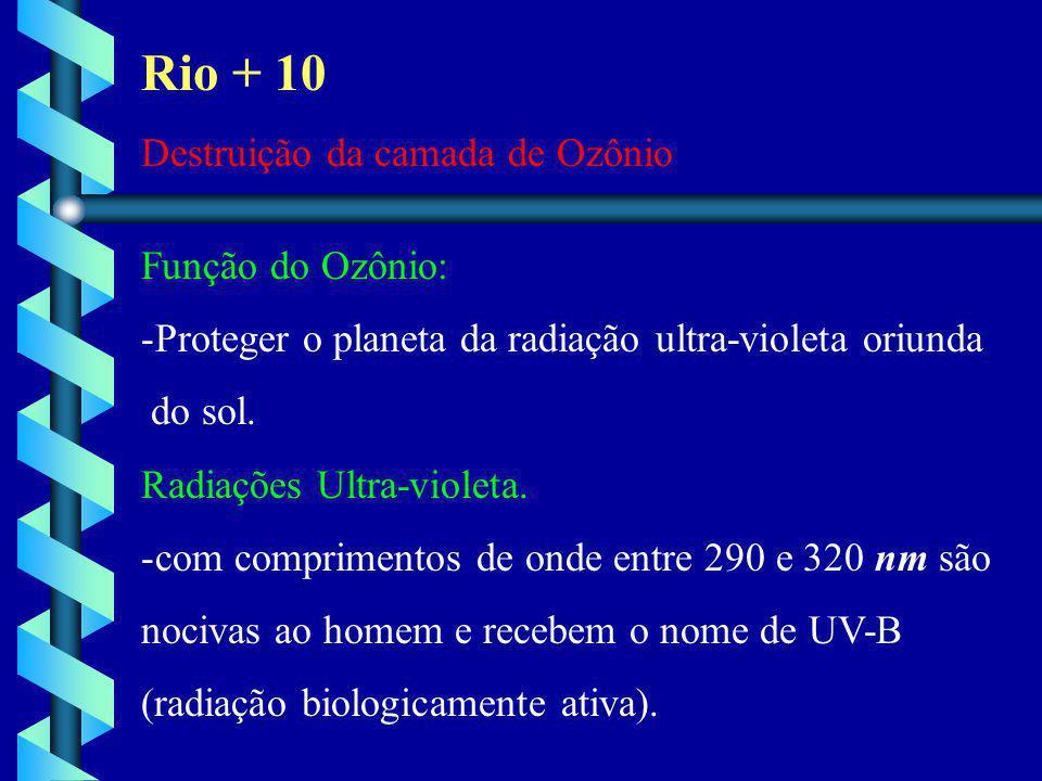Rio + 10 Destruição da camada de Ozônio Função do Ozônio: