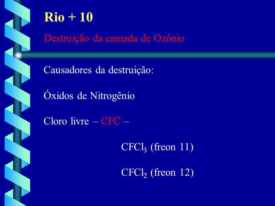 Rio + 10 Destruição da camada de Ozônio Causadores da destruição: