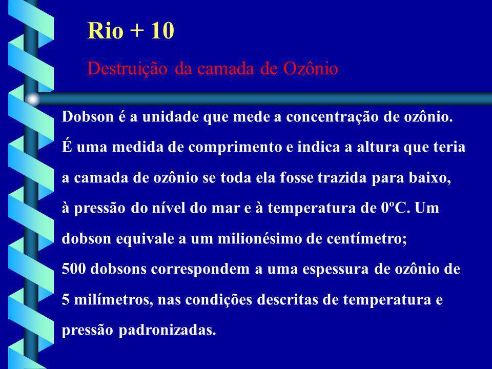 Rio + 10 Destruição da camada de Ozônio