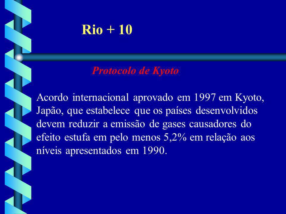 Rio + 10 Protocolo de Kyoto