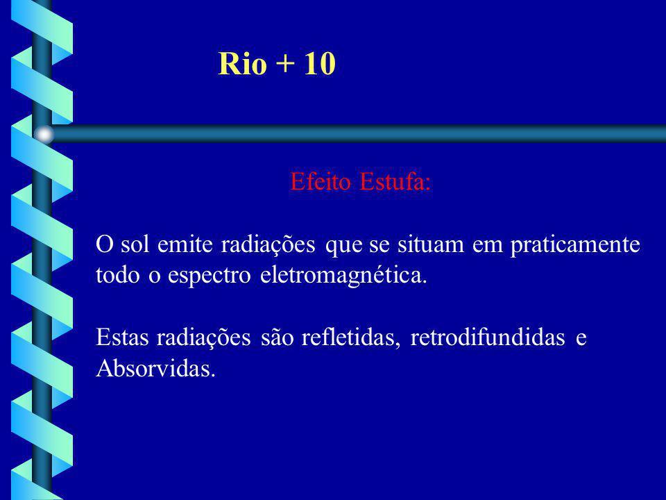 Rio + 10 Efeito Estufa: O sol emite radiações que se situam em praticamente todo o espectro eletromagnética.