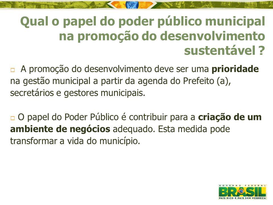 Qual o papel do poder público municipal na promoção do desenvolvimento sustentável
