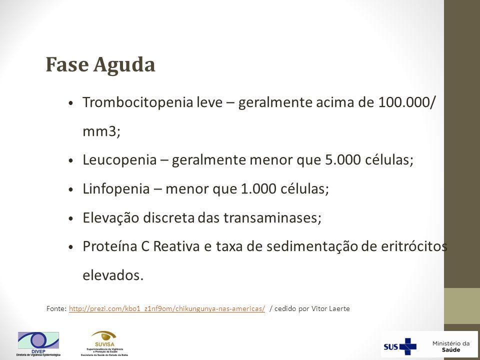 Fase Aguda Trombocitopenia leve – geralmente acima de 100.000/ mm3;